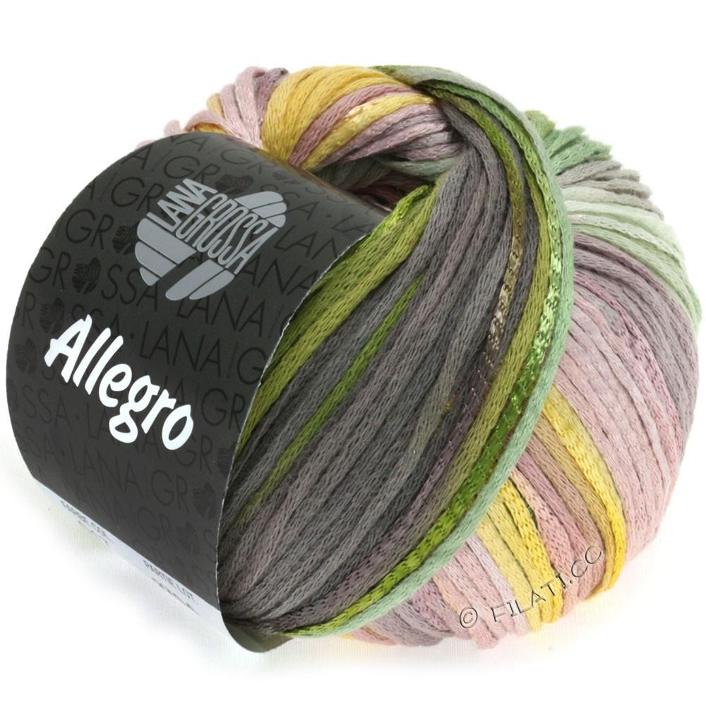 Lana Grossa ALLEGRO | 017-jaune/vert/moka/bois de rose