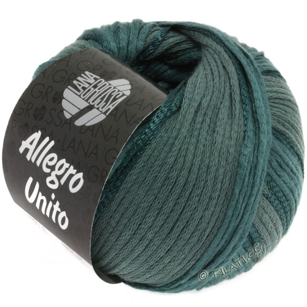 Lana Grossa ALLEGRO Unito | 108-gris vert