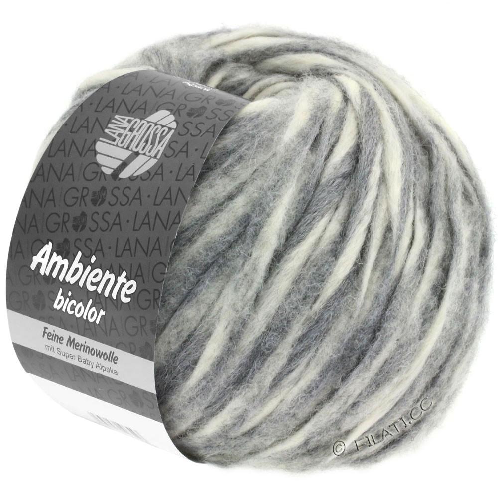 Lana Grossa AMBIENTE Bicolor | 101-écru/gris