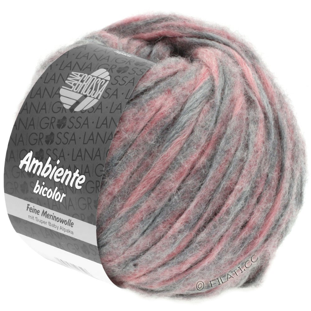 Lana Grossa AMBIENTE Bicolor | 104-bruyère/gris