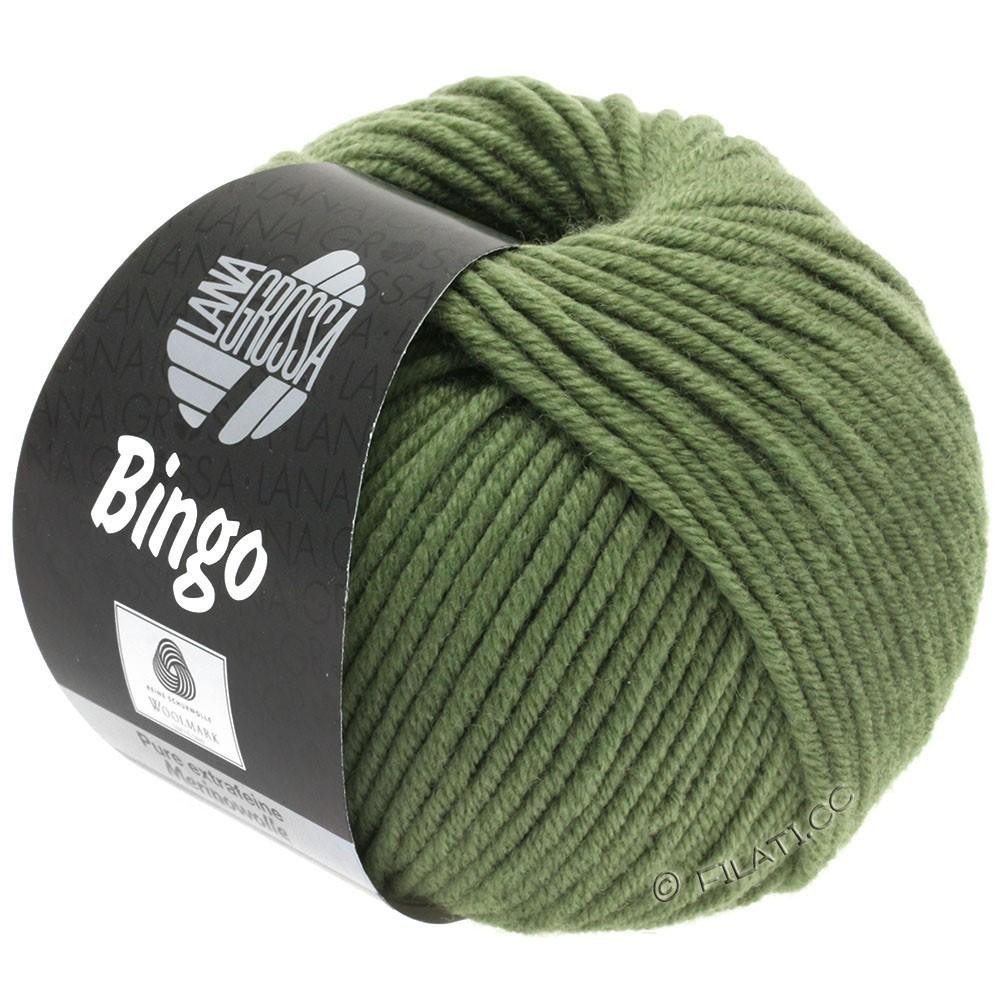 Lana Grossa BINGO  Uni/Melange | 180-vert réséda