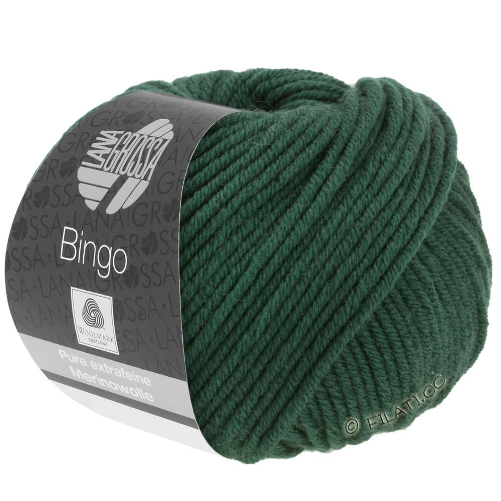 Lana Grossa BINGO  Uni/Melange | 189-vert foncé