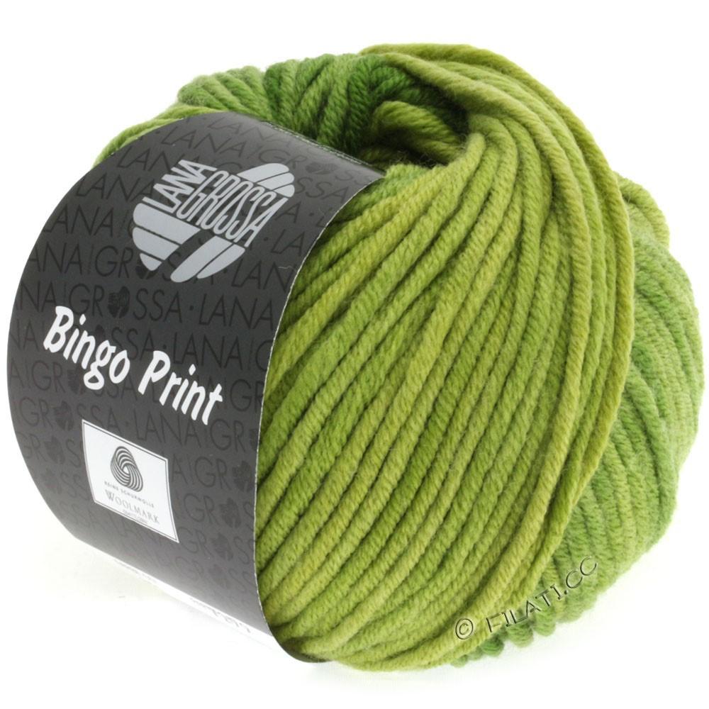 Lana Grossa BINGO Print | 610-vert jaune/feuille verte/pomme verte