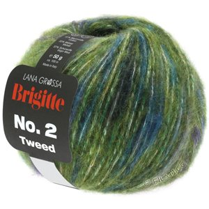 Lana Grossa BRIGITTE NO. 2 Tweed | 107-olive/violet/pétrole