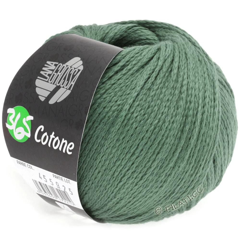 Lana Grossa 365 COTONE | 30-vert réséda