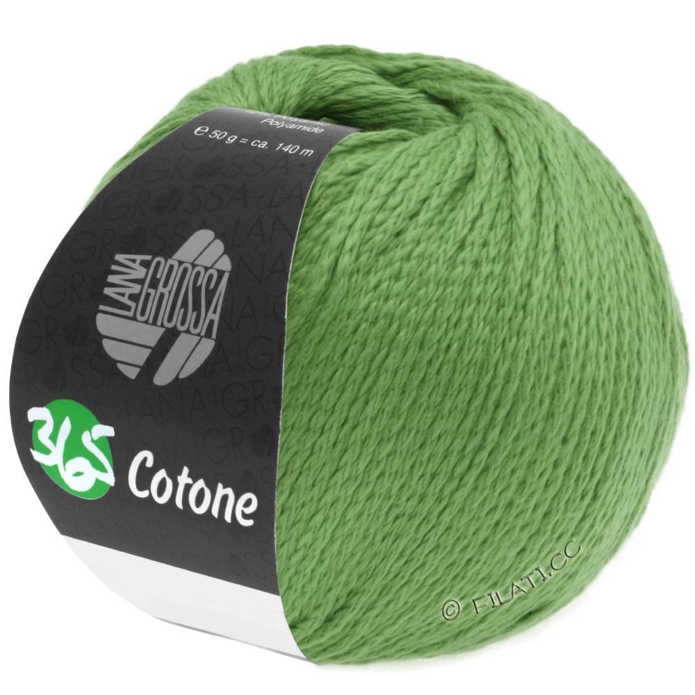Lana Grossa 365 COTONE | 46-vert clair