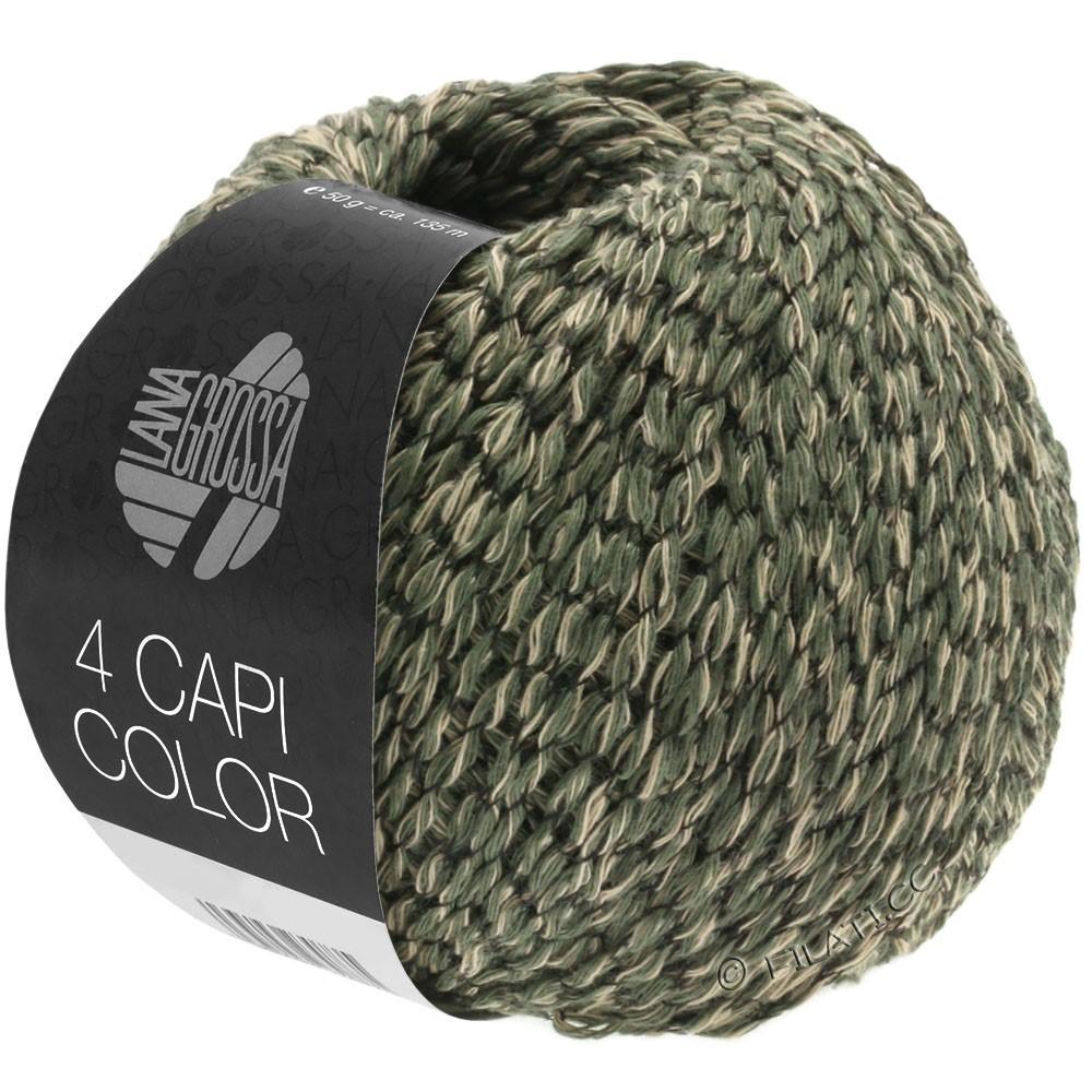 Lana Grossa 4 CAPI Color | 103-sable/chasseur vert