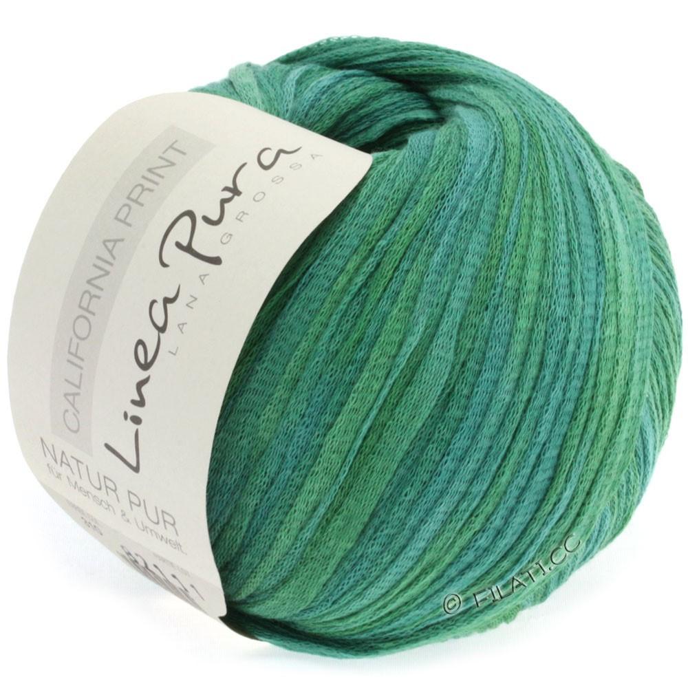 Lana Grossa CALIFORNIA Uni/Print (Linea Pura) | 310-gris vert/herbe