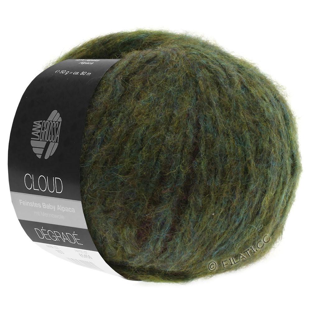 Lana Grossa CLOUD Dégradé | 105-baies/olive