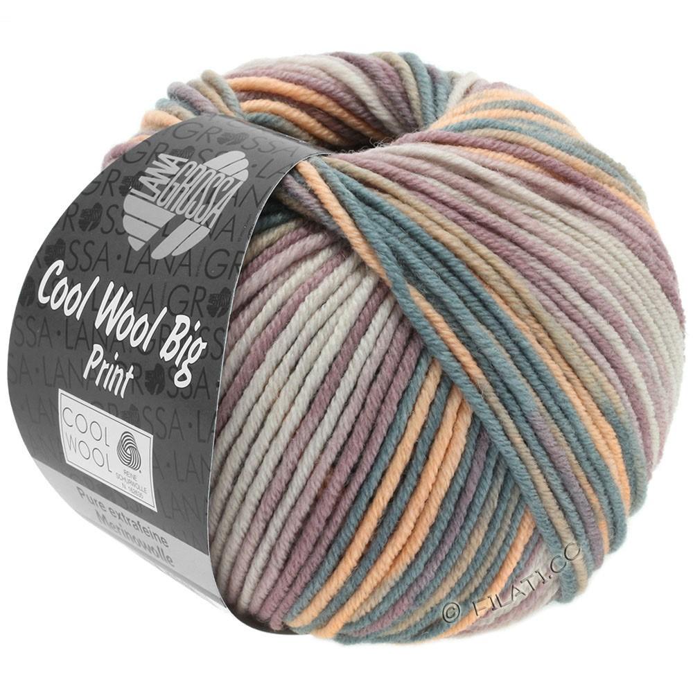 Lana Grossa COOL WOOL Big Uni/Melange/Print | 3009-grège/taupe/vieux rose/pêche/gris foncé