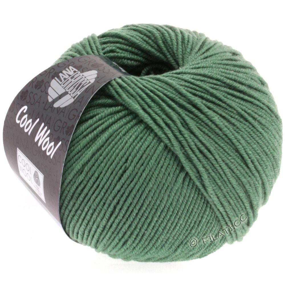 Lana Grossa COOL WOOL  Uni/Melange/Print/Degradé/Neon | 2021-vert gris foncé