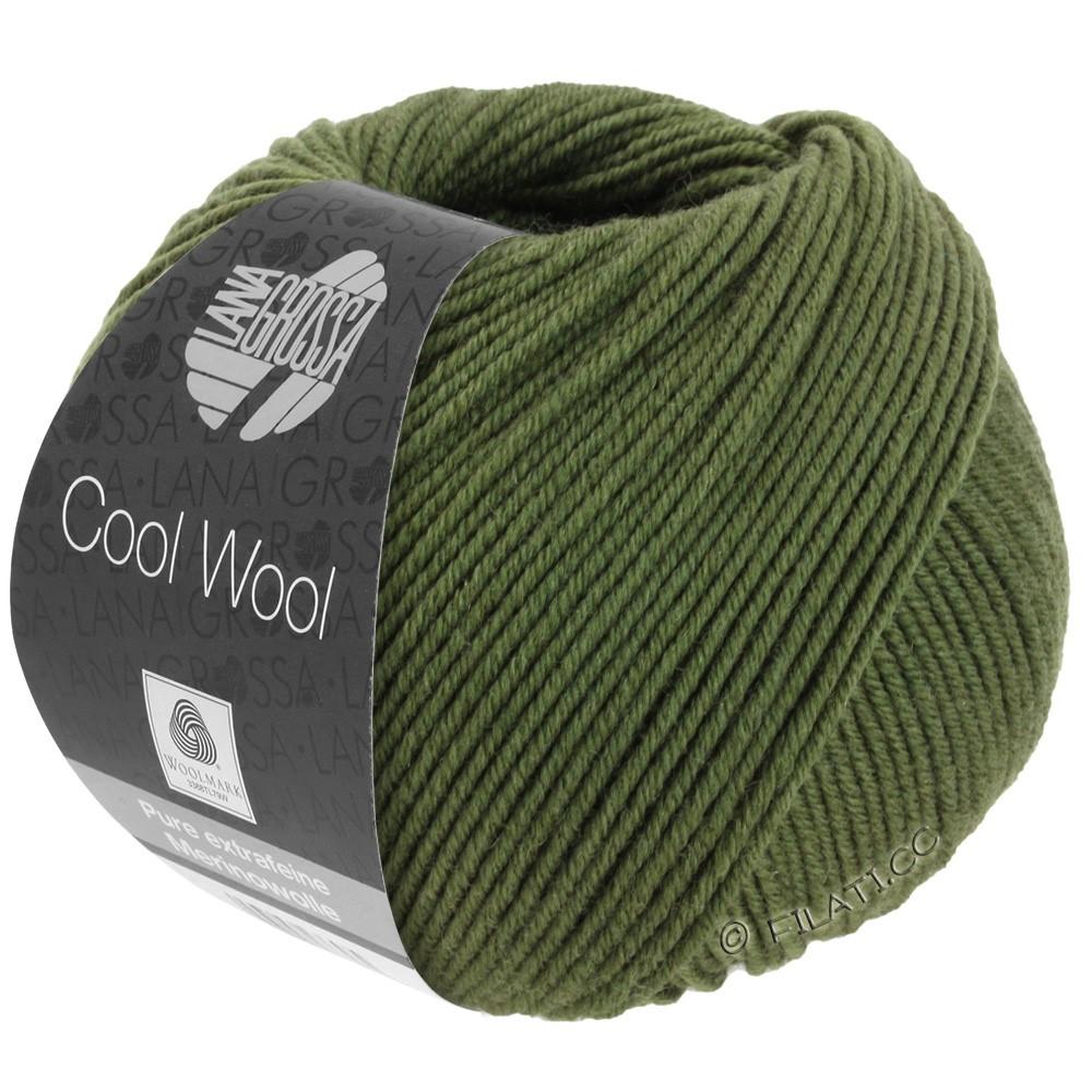 Lana Grossa COOL WOOL  Uni/Melange/Print/Degradé/Neon | 2042-olive foncé