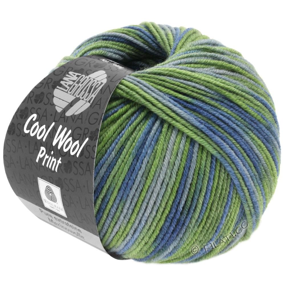 Lana Grossa COOL WOOL  Print | 800-vert clair/vert réséda/bleu gris/gris vert