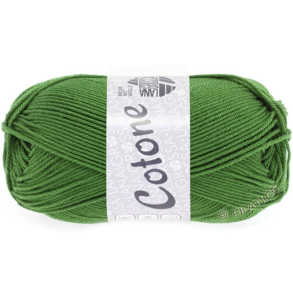 Lana Grossa COTONE | 54-vert fougère