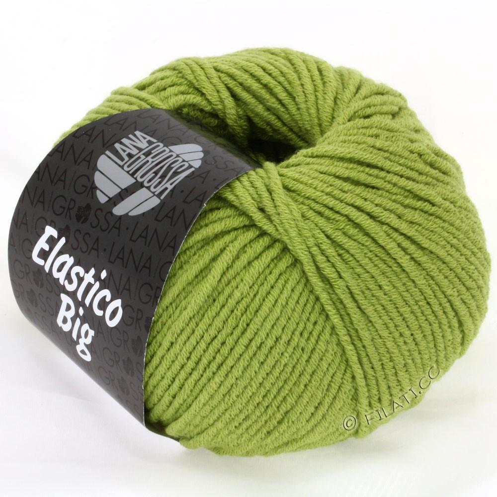 Lana Grossa ELASTICO Big | 07-beau vert