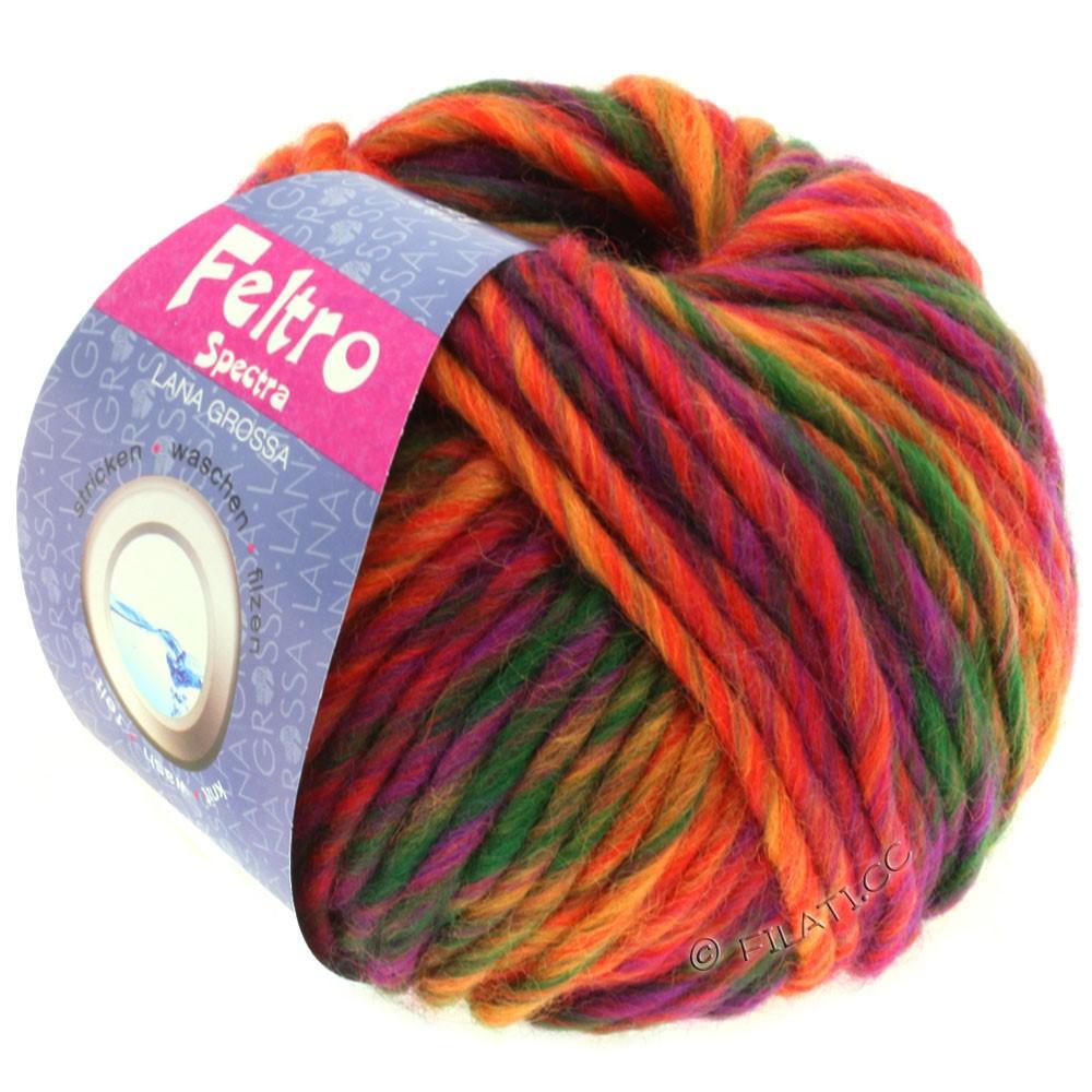 Lana Grossa FELTRO Spectra | 805-rouge/orange/violet/vert bouteille