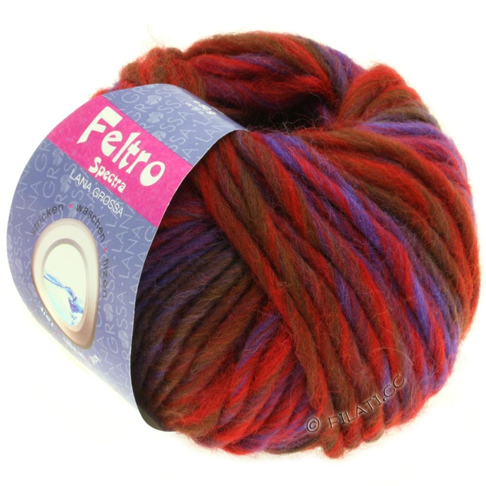 Lana Grossa FELTRO Spectra | 806-rouge/bleu/violet/brun chocolat
