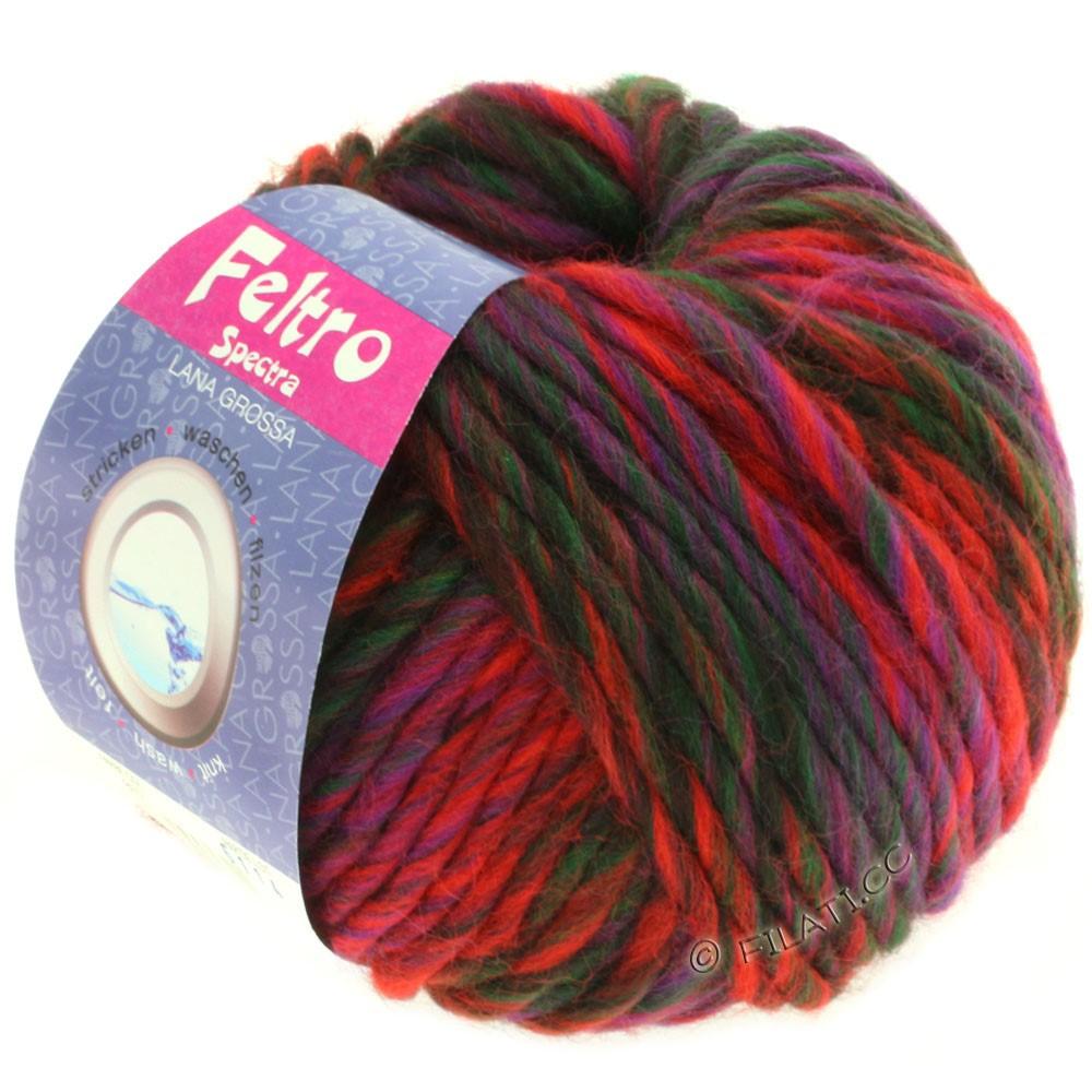 Lana Grossa FELTRO Spectra | 807-rouge/violet/vert bouteille/brun noir