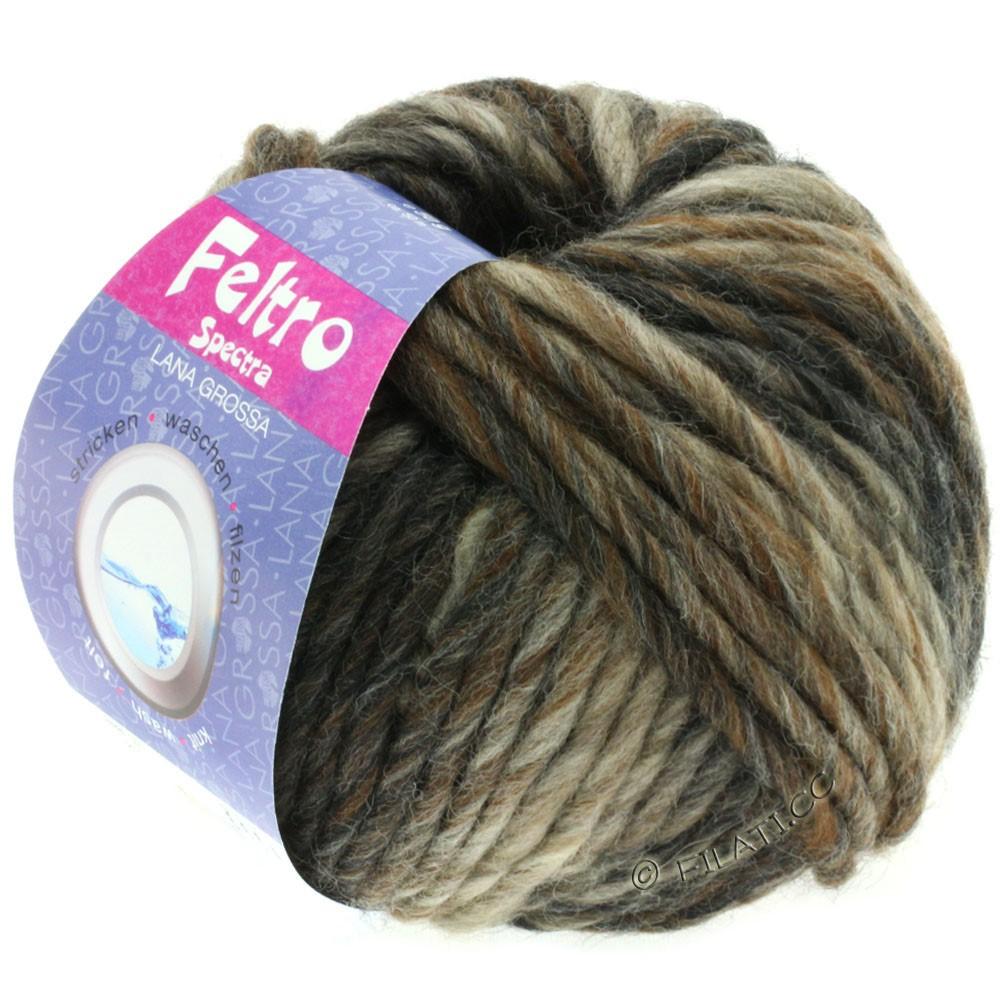 Lana Grossa FELTRO Spectra | 810-grège/taupe/brun chocolat/anthracite