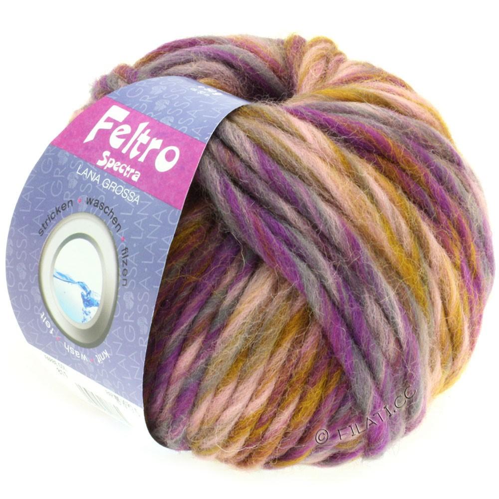 Lana Grossa FELTRO Spectra | 811-rose/moutarde/violet/gris