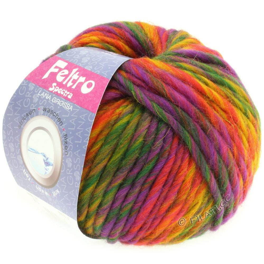 Lana Grossa FELTRO Spectra | 815-jaune/orange/rouge/violet/vert