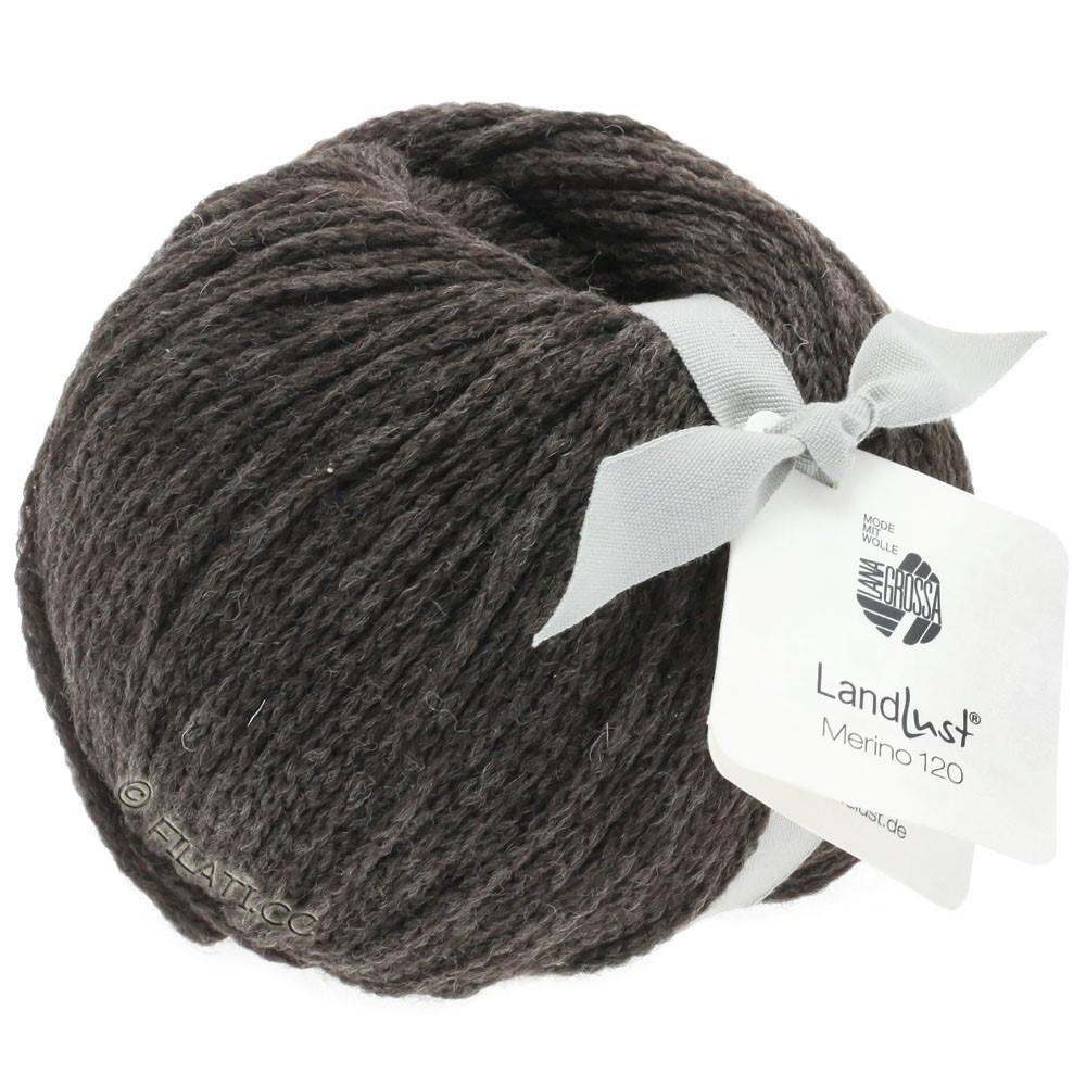 Lana Grossa LANDLUST MERINO 120 | 106-brun gris