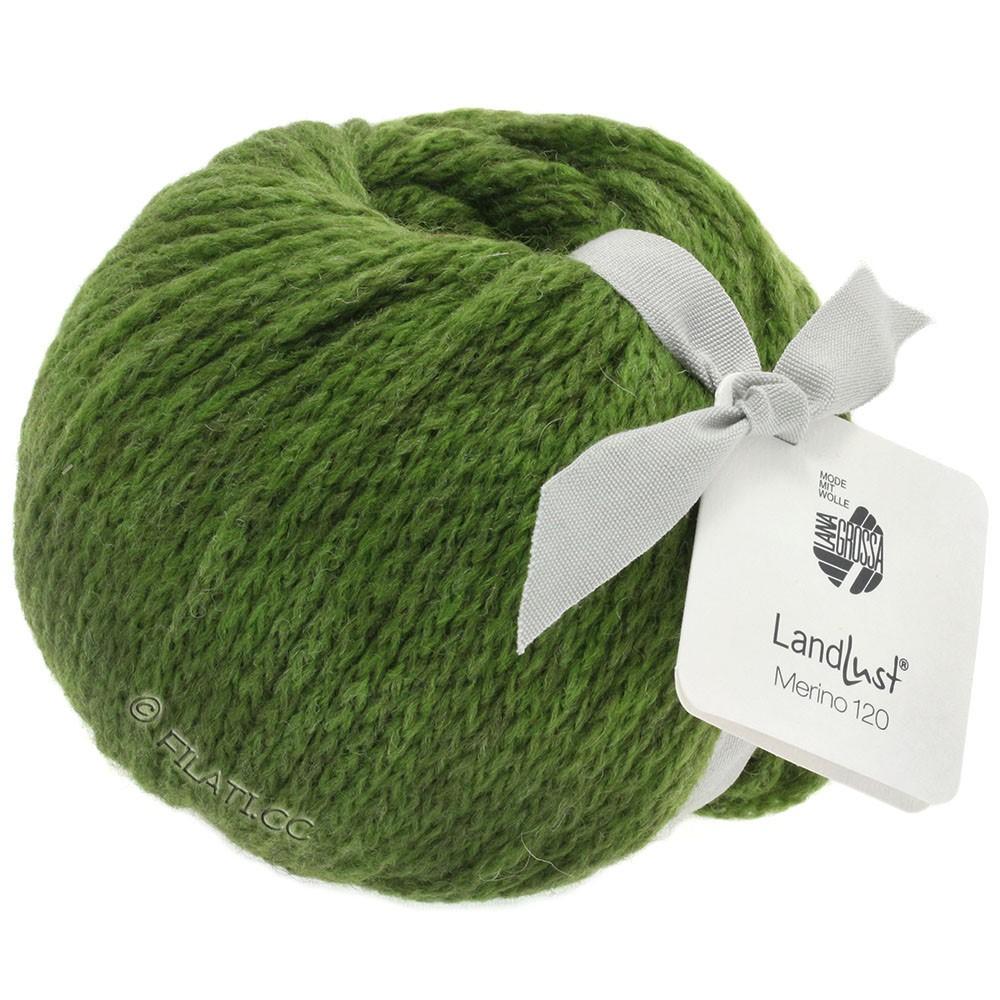 Lana Grossa LANDLUST MERINO 120 | 117-vert olive