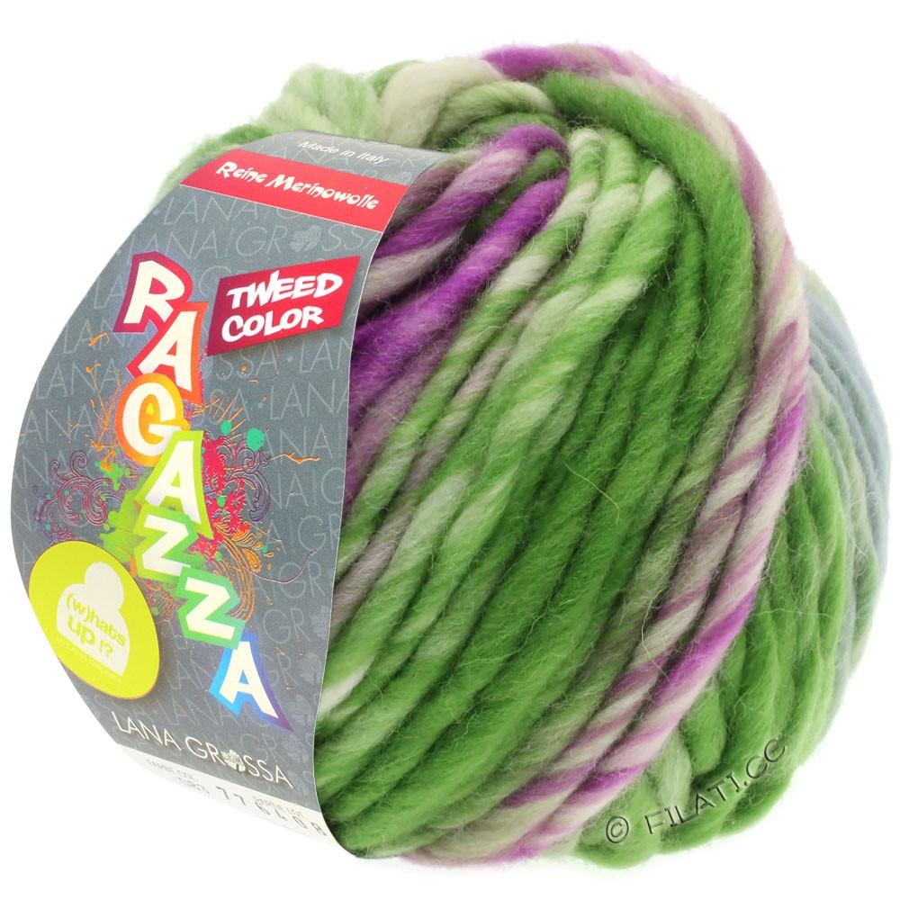 Lana Grossa LEI Tweed Color (Ragazza) | 402-gris bleu/vert/violet rouge chiné