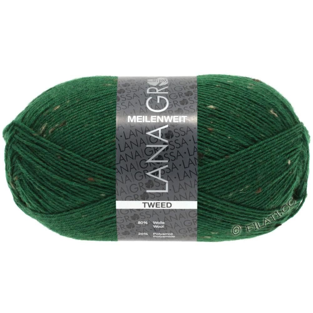 Lana Grossa MEILENWEIT 100g Tweed | 150-vert