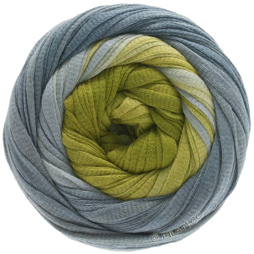 Lana Grossa PRIMAVERA | 207-gris pierre/gris/vert foin