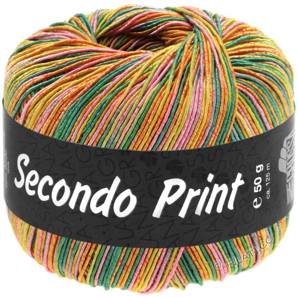 Lana Grossa SECONDO Print II | 515-émeraude/pistache/abricot/rose vif