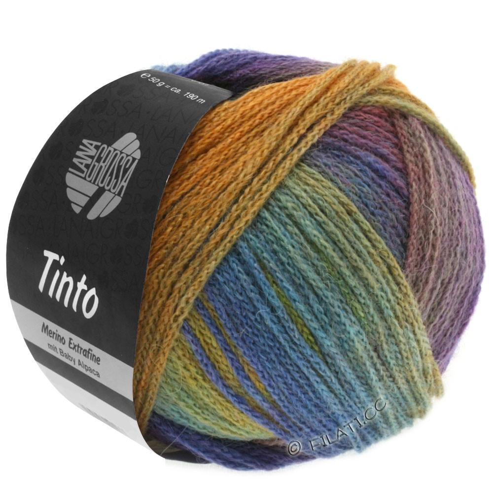 Lana Grossa TINTO   02-jaune moutarde/turquoise/violet bleu/violet rouge/vert réséda/bleu