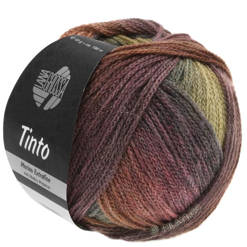 Lana Grossa TINTO   08-brun chocolat/brun noisette/moutarde/gris vert/baies/aubergine/prune