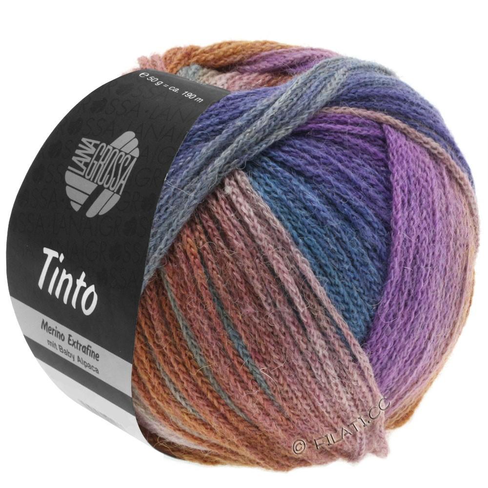 Lana Grossa TINTO   09-gris clair/vert réséda/pourpre/brun/bleu pétrole