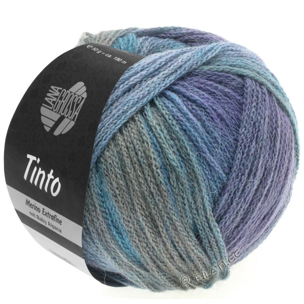 Lana Grossa TINTO   10-bleu clair/gris clair/bleu/pourpre/brun rouge/menthe