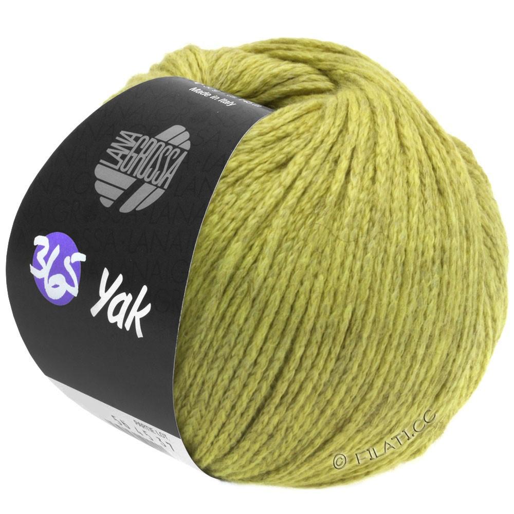 Lana Grossa 365 YAK   05-beige vert/gris clair