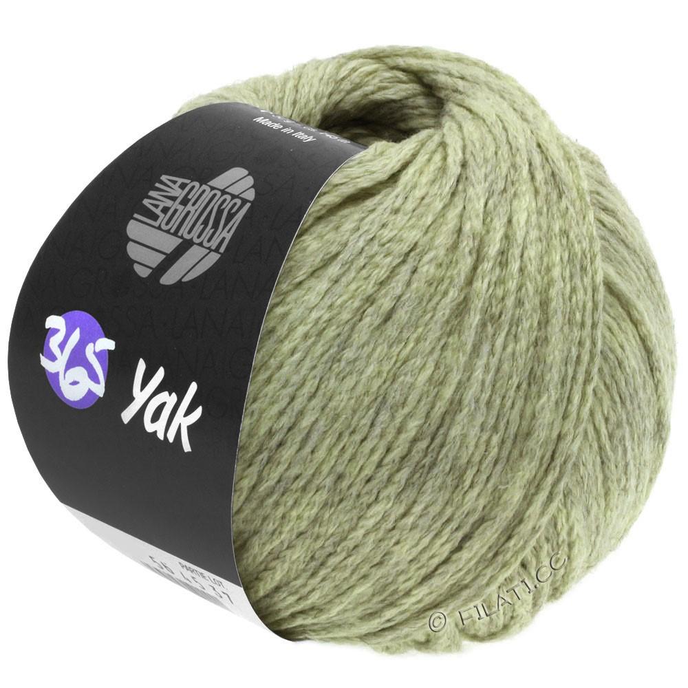 Lana Grossa 365 YAK   19-vert tendre/gris
