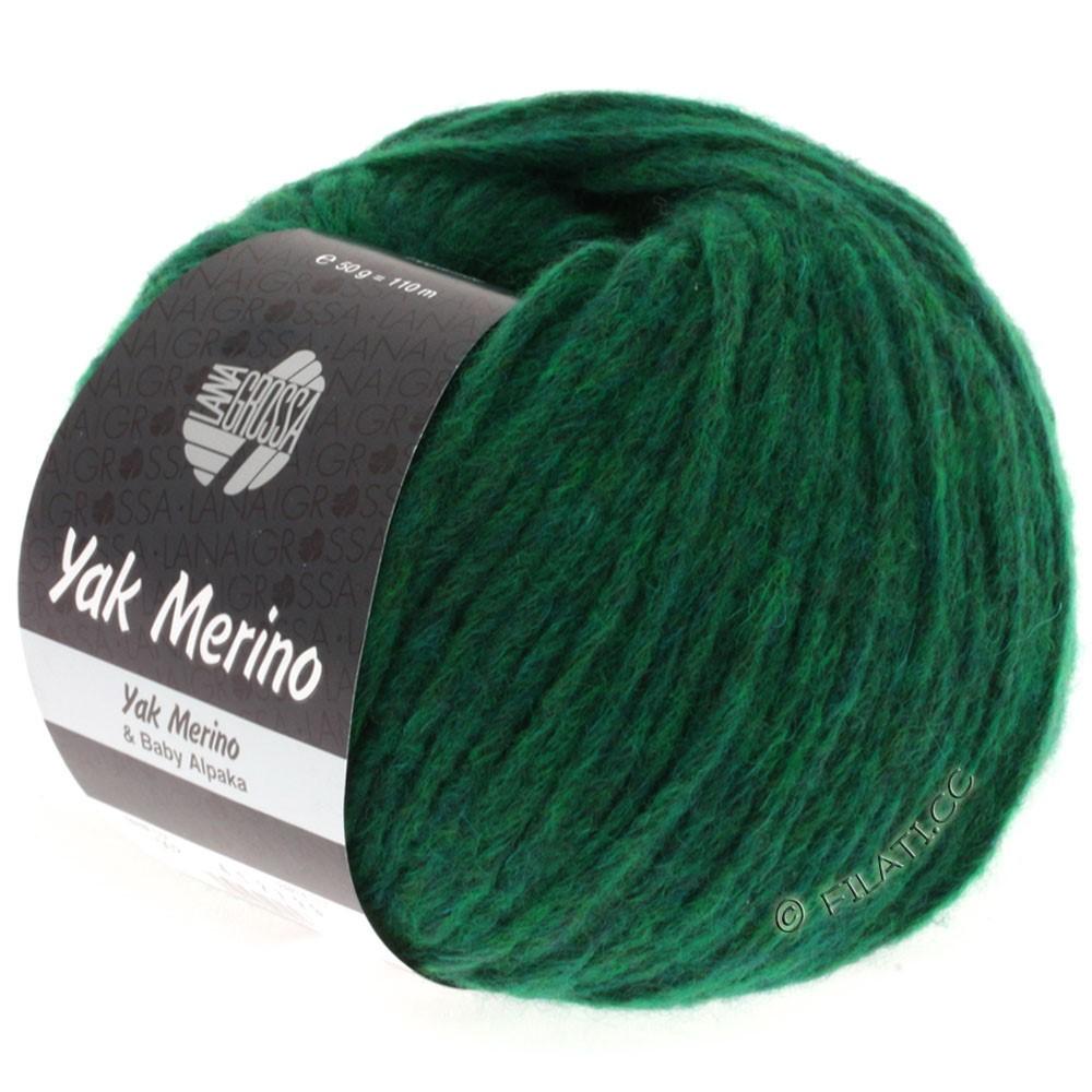 Lana Grossa YAK MERINO | 002-vert chiné